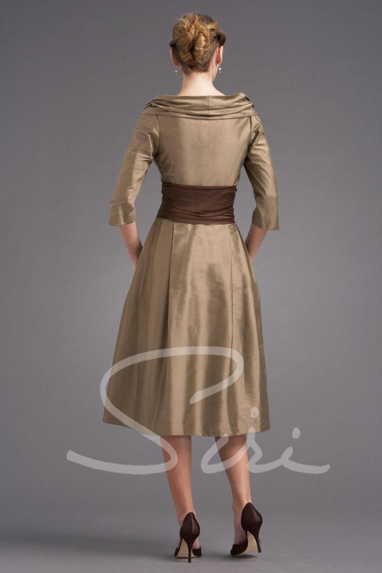 dress with sleeve