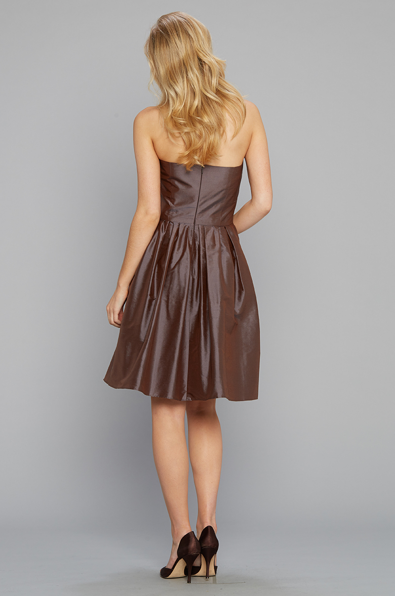 Strapless Party Dress silk