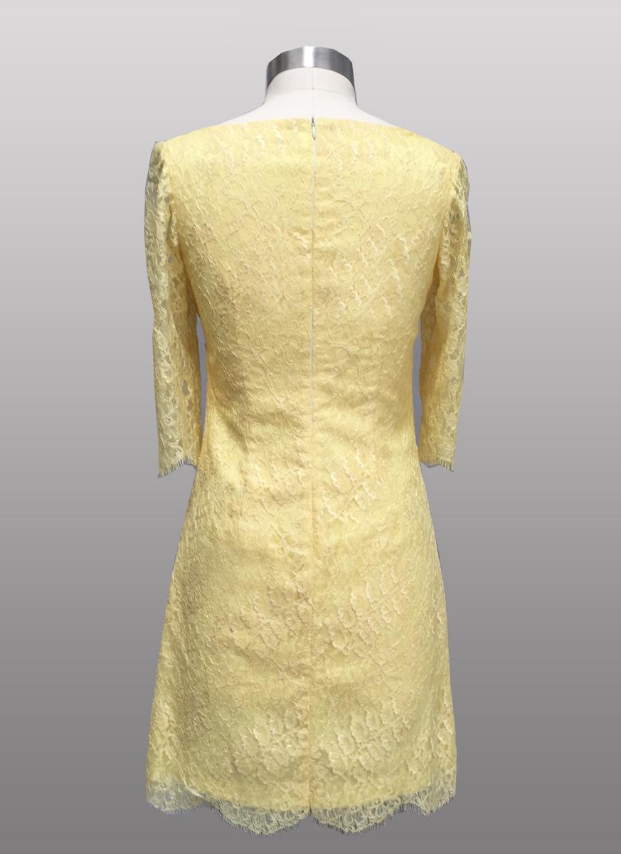 Siri lace dress